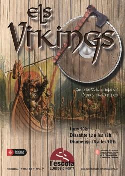 Els Vikings